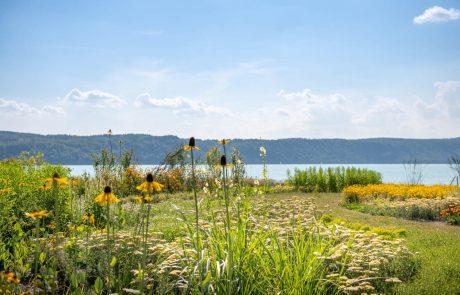 Uferpark mit Blick auf den Überlinger See. Bild: Landesgartenschau Überlingen 2020 GmbH/Paul Meyer