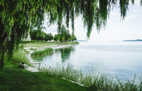 Uferpark am Bodensee mit Flachuferbereich. Bild: Landesgartenschau Überlingen 2020 GmbH