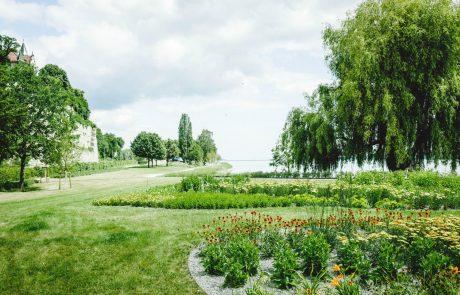 Uferpark Überlingen Staudenpflanzung. Bild: Landesgartenschau Überlingen 2020 GmbH/Jürgen Heppeler